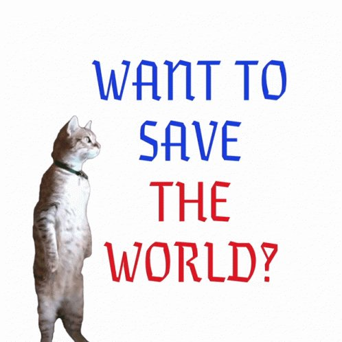 Want To Save The World Cat GIF