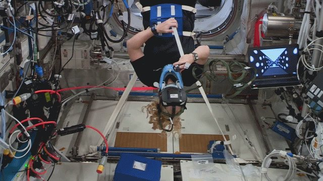 Image for the Tweet beginning: This past week, @Astro_SEAL departed