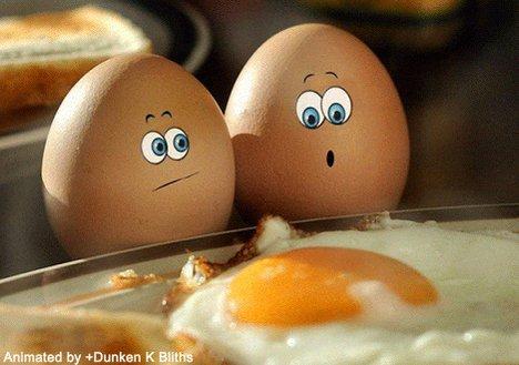 eggs GIF