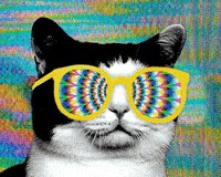The Futures So Bright I've Gotta Wear Shades #INedchat twitter.com/Holly_Stachler…