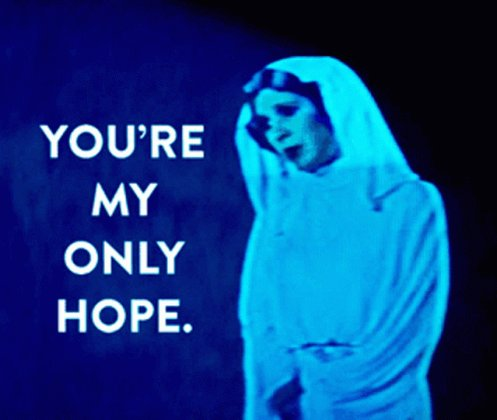 Leia Youre My Only Hope GIF
