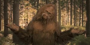 @HufflePuffin_ @bmurphy28 That's like a scene where they would film Big Foot.