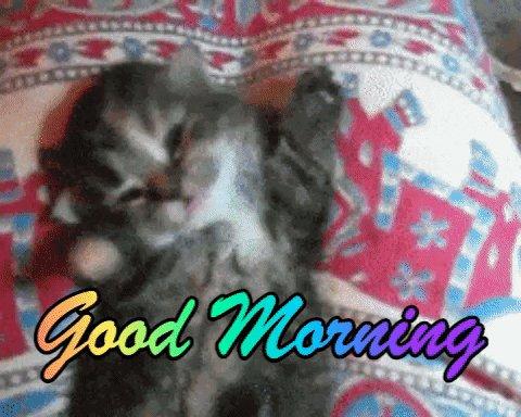 Buongiorno Mirella
