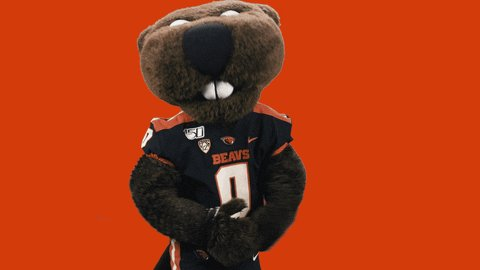 Image for the Tweet beginning: THE BEAVER STATE 🦫🦫 #GoBeavs