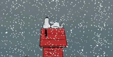 tonight we are starting with some @Snoopy christmas. man, these kids are dealing with some, like, 50 year old existential crises all the time. and WILDY unsupervised. I love them so much.