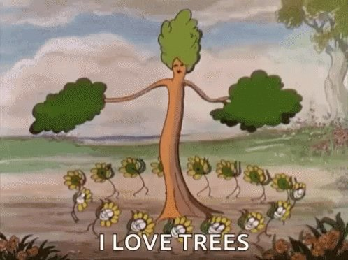 @Google @LACity L💞VE  Trees, Plant Trees To be gifted the safest world