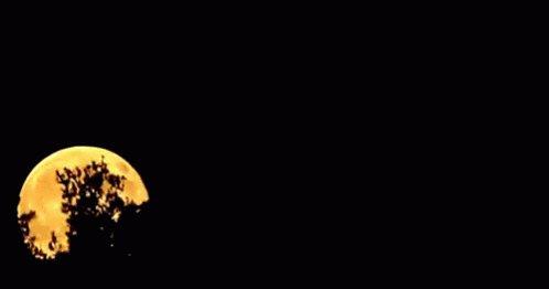 Moon Rising GIF