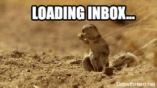 Email Squirrel Lots Of Emails GIF