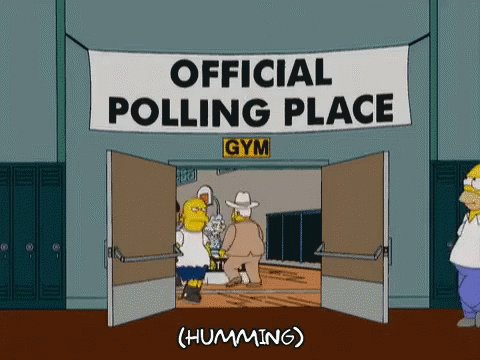 Replying to @teatime75: Voting day is a national 3 day holiday  #ShouldBeInTheConstitution