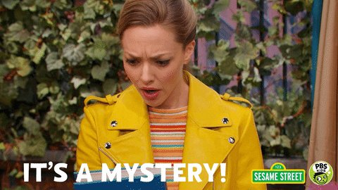 Sesame Street Mystery GIF by PBS KIDS