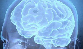 ... pero en cuanto identificamos una causa, dejamos de considerarlo #autismo y empezamos a hablar de síndromes, de PCI, de privación global extrema…  Hacerlo así me parece una pérdida de oportunidades de investigación en neurociencia.