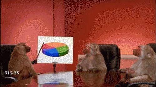 Baboon Graph GIF