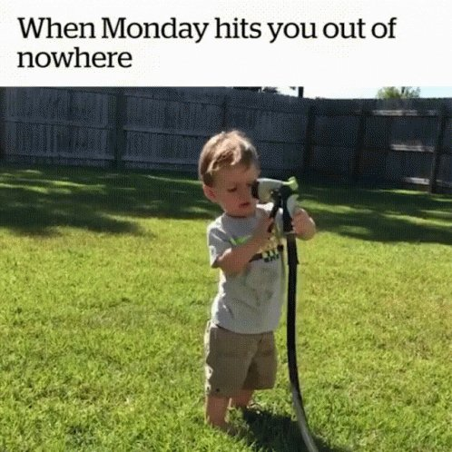 Happy Monday to all!!! #MondayMorning