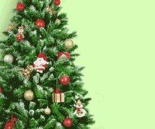 @mskristinawong @FLOTUS @WhiteHouse F@*king Christmas!