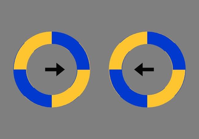 矢印の方向に動いて見えますね~?人間の脳は単純なので矢印で惑わされてしまうのでーす