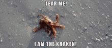 @Angry_Staffer @emiluvi Yup, the Kraken has been released ...