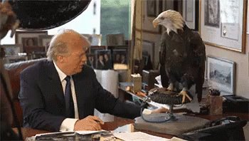That Eagles can detect a Traitor! #ThingsWeShouldThankTrumpFor