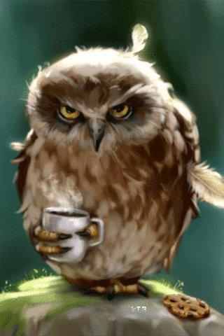 @jimmyfallon Silent Night Owl #AddAWordRuinAChristmasSong