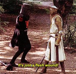 NO BIG DEAL, NOTHING TO SEE HERE, NOT A PROBLEM, ONLY A FLESH WOUND twitter.com/donlday/status…