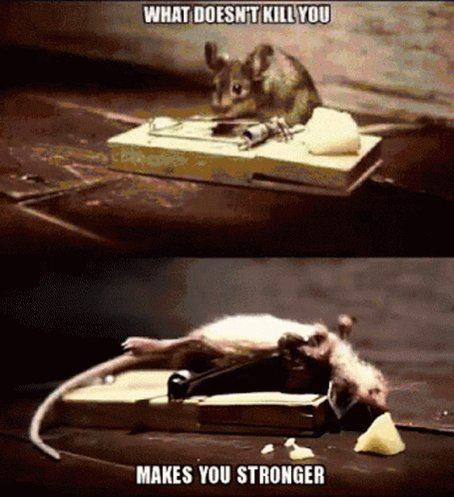 Mouse What Doesnt Kill You ...