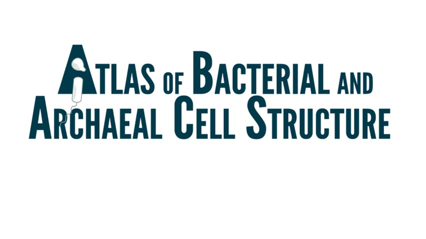 We're excited to announce the Atlas of Bacterial & Archaeal Cell Structure (https://t.co/KtZjJKUArq), an open-access multimedia textbook that shows what's inside microbial cells like never before, featuring ~150 of our best cryotomograms and animations