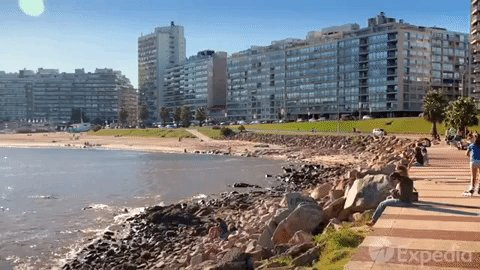 south america uruguay GIF