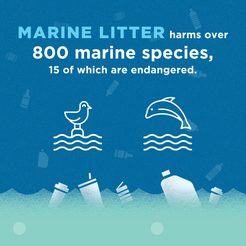 #DYK marine litter harms over 800 marine species, 15 of which are endangered.  We need to #BeatPollution to #SaveOurOcean🌊  Explore the latest ocean data   @OvaisSarmad @ReallySwara @santhoshadv @PamelaFalk @MrKRudd @AidanRGallagher