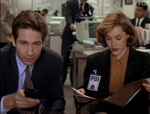 david duchovny what GIF by The X-Files
