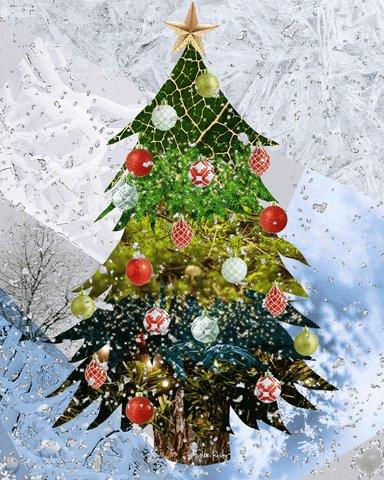 @davidbisbal Feliz Navidad 🎄😘 Familia♥️