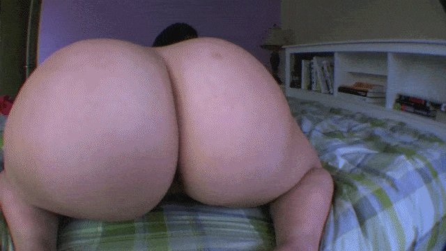 Bounce, clap and grind - Felicia Clover's big juicy butt can do it all! https://t.co/dQqT0cMh5f #BigButts
