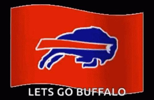 Buffalo Bills Fans GIF