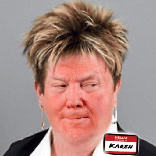 #TrumpSeriesFinale     Trump goes into —hiding with a new identity.  Meet Karen.