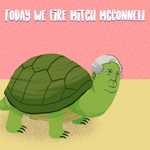 @HillaryClinton The turtle has been defeated!