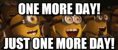 "Minions yelling ""ONE MORE DAY! JUST ONE MORE DAY!"""
