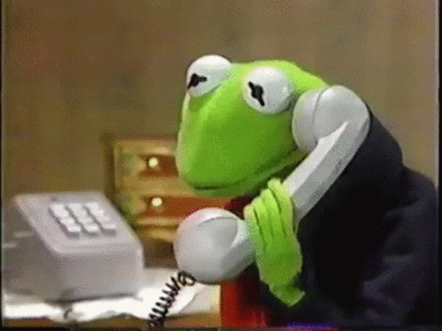 Kermit Phone Call GIF
