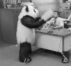 Angry Panda GIF