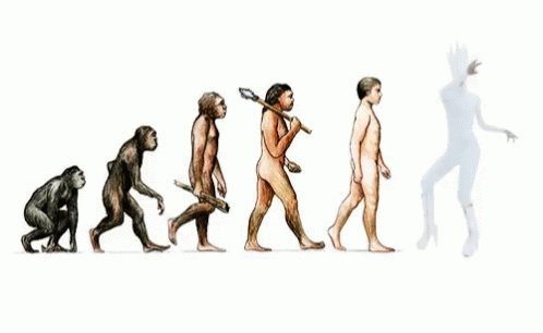 Evolution GIF