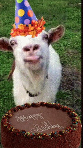 @ClaMarchisio8 #happy #birthday to you! 🥳🎂🎁🎉🎈 #BeKind