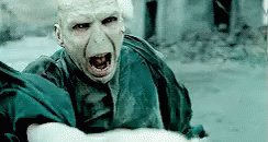 If Real Life Was A Harry Potter Movie Then Donald Trump is now the Voldemort of AMERICA !!   #TrumpsLastDay #TrumpPardons #ConvictTrump #ImpeachedTwice #CelebrateAmerica