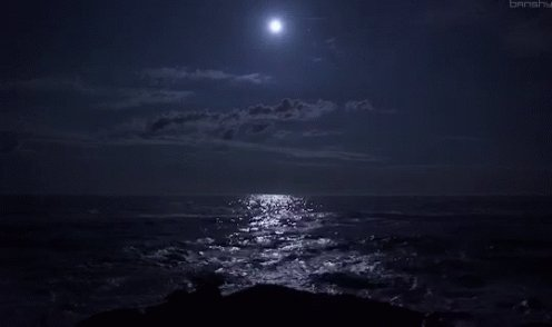The #euphoria we felt  when we beheld the sight of the moonlit waves & the starry night  He took my hand as we breathed in the salty air And then laughed  as the breeze tousled our hair  Such a sweet memory of a long lost time When I was his and he was mine #vss365