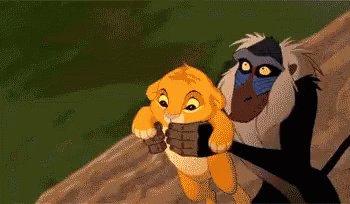 @taylordbaird Circle of Life stuff really. Adios Simba! #GoStars