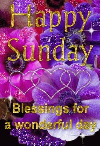 Good Morning✨ Happy Sunday Bless Thankful Living Loving Life Thank You Lord #SundayMorning ♥️