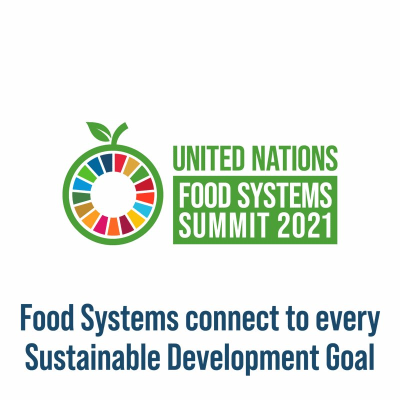 Healthy & nutritious food helps #PowerEducation! ⚡  Transforming #FoodSystems to be stronger, sustainable & inclusive is key to ensuring children get the nourishment they need to reach their full potential.  Learn more this #EducationDay via @UNESCO  👉