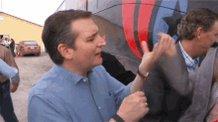 Who the hell thinks #SethRoganLovesTedCruz? Nobody loves Ted Cruz!  Nobody! Nobody!