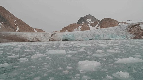 Scientists with the Oceans Melting Greenland mission have discovered that glaciers in Greenland's deep fjords account for nearly half of all ice loss (as previously monitored by satellites):