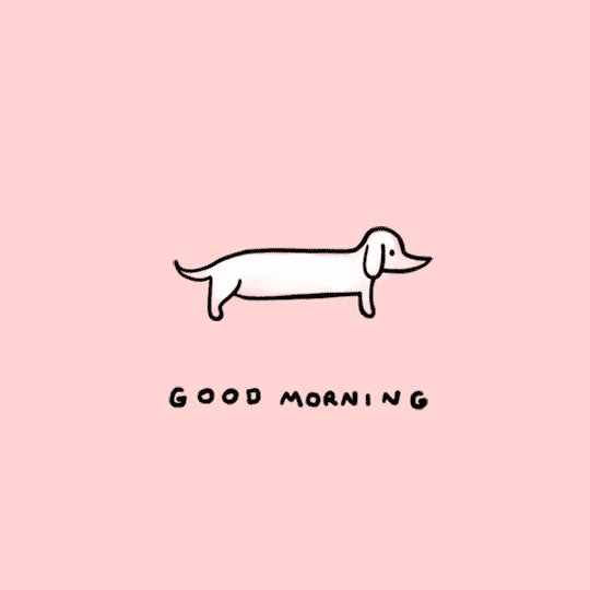 #goodmorning deep breaths, deep stretches.... what's your morning routine?  Has it changed from a year ago?   What's the first thing you think about when you wake?   #GoodMorningTwitterWorld #tuesdayvibe #tuesdaymotivations #pandemiclife #COVID19 #MentalHealthMatters #youmatter