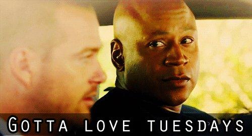 Gotta Love em   #hey #goodmorning #tuesdaymood #tuesdayvibe #Tuesday