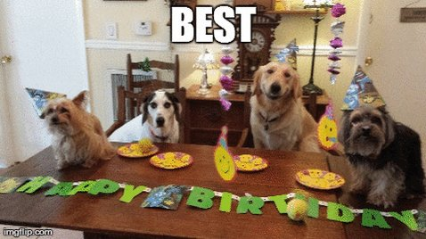 Happiest of Birthdays to @FitCityJordan!! Hope you have the best day and your pack treats you well!! 🥳🎉🎁🎈🐶💝