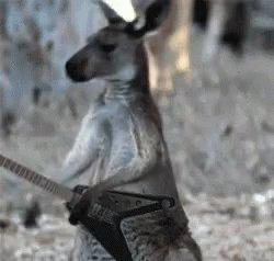 #AussieSongsOrBands  Aussie Osbourne 😬