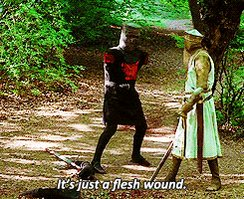 Are you sure it isn't a flesh wound? #StupidInjuryQuestions